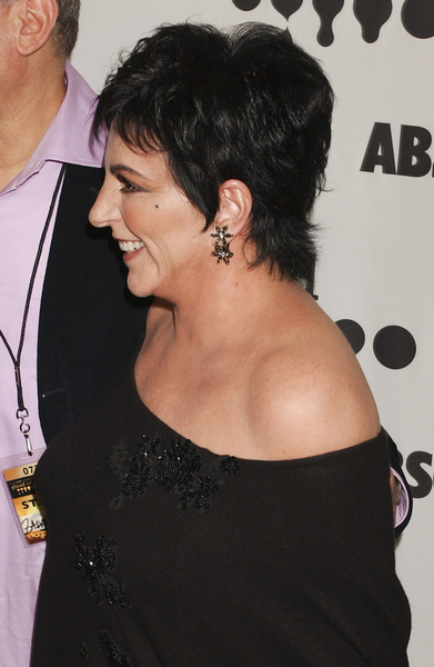 Liza Minnelli Hairstyle Back/Side View